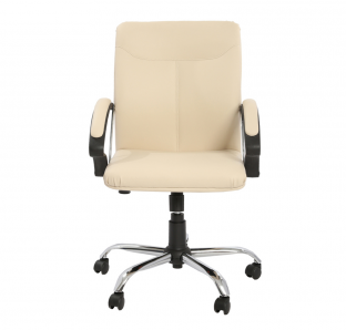 Target Medium Back Chair