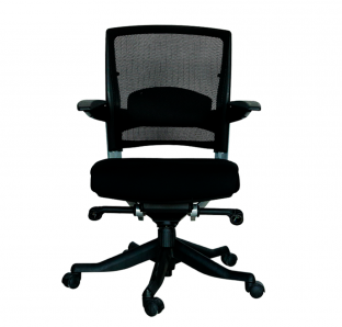 Fulkrum Low Back Chair